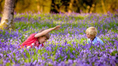 Spring Has Sprung At Wakehurst