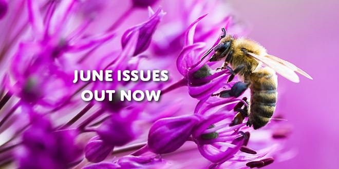 June F Image