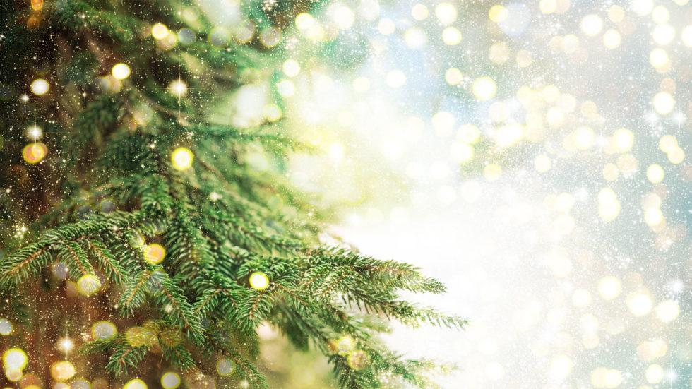 Hospice Invites Community To Online Tree Of Light Service